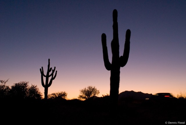arizona_desert_at_sunset_8501